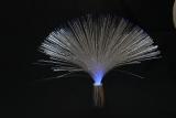 3 choses que vous devez connaitre sur la fibre optique
